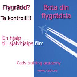 Flygrädsla